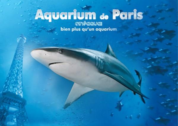 Vivent-les-requins.jpg