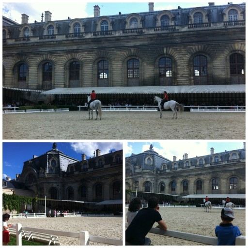 Demonstrations equestres_Chantilly_Expressionsdenfants