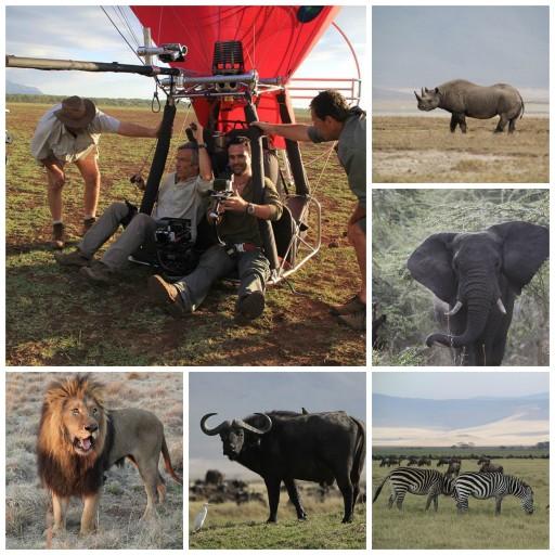 African Safari 3D_Expressionsdenfants