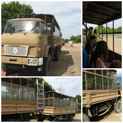 Safari_Camion_Planète Sauvage_Expressionsdenfants