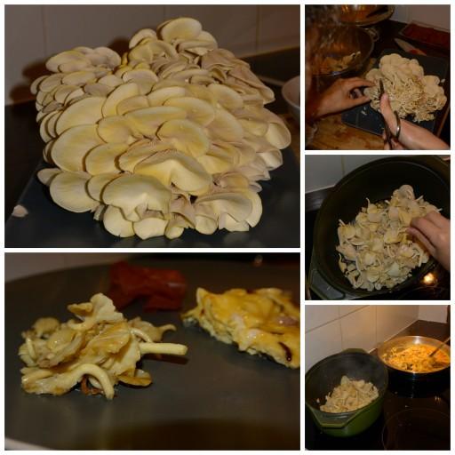Prêt à Pousser_Pleurottes préparation_Cuisine_Expressionsdenfants