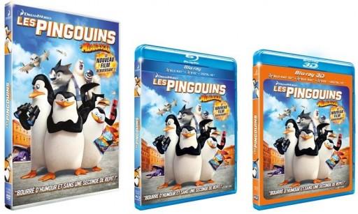 DVD_Les Pingouins de Madagascar_Une_xpressionsdenfants