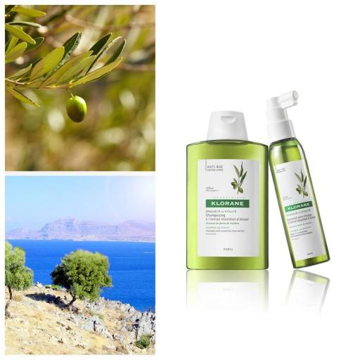 Shampoing et soin à l'olivier_Klorane_hommes_Expressionsdenfants