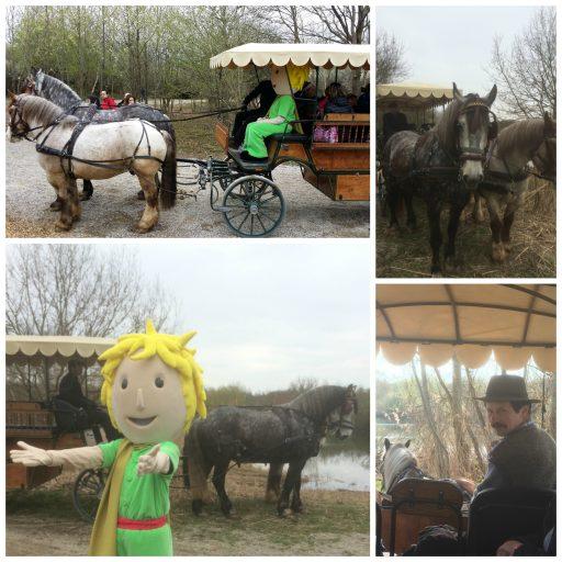 Ecomusée _ Parc du Petit Prince _ Extension_Expressionsdenfants