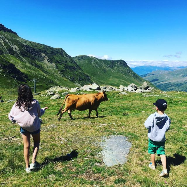 On n attrape pas les vaches avec des BN! instagoodhellip