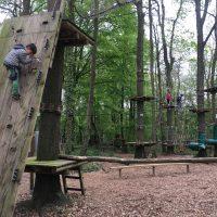 Sherwood Parc, la tête dans les arbres